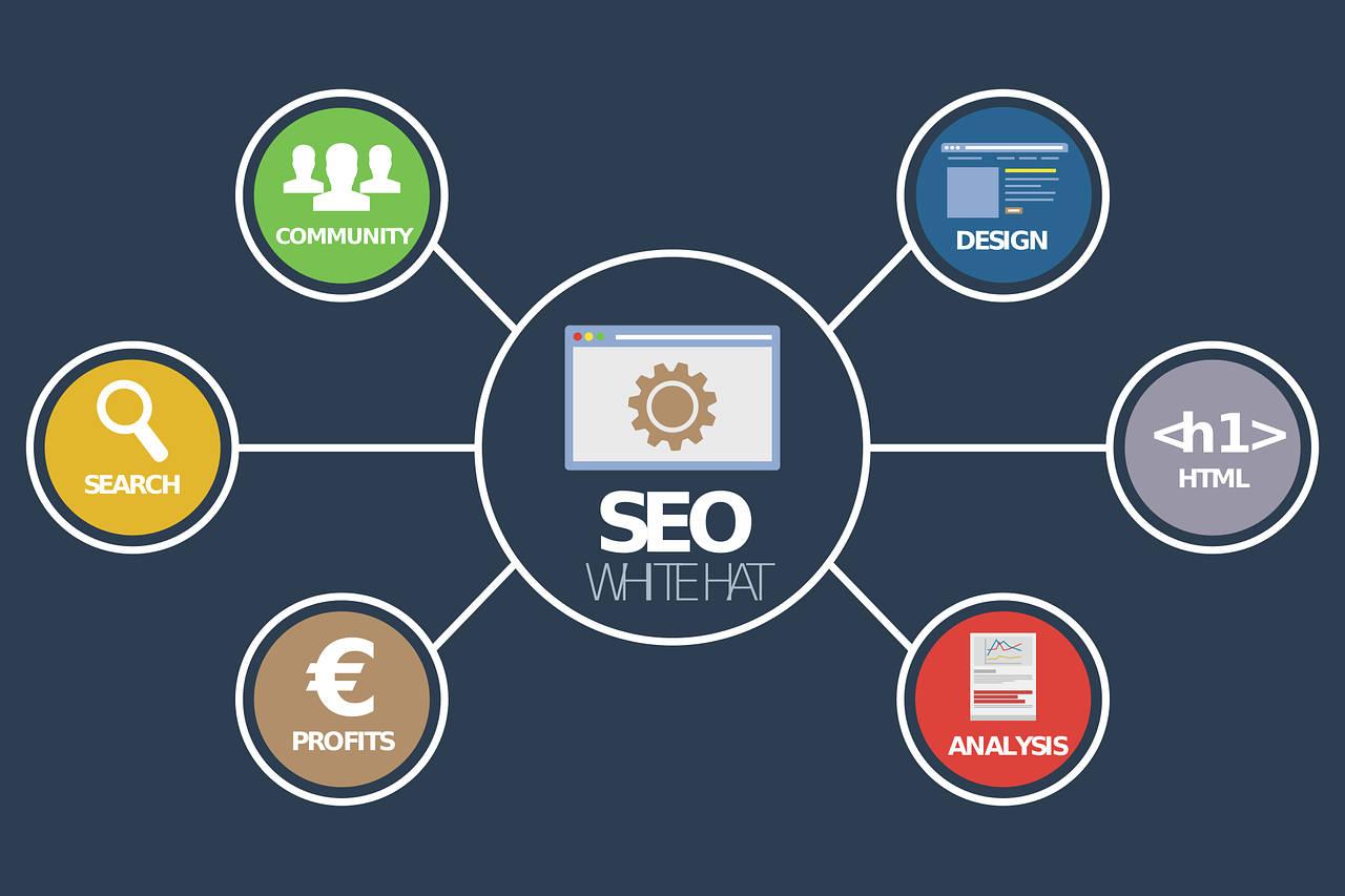 cos'è la SEO e perché ottimizzare un sito web
